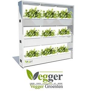 vegger groenten