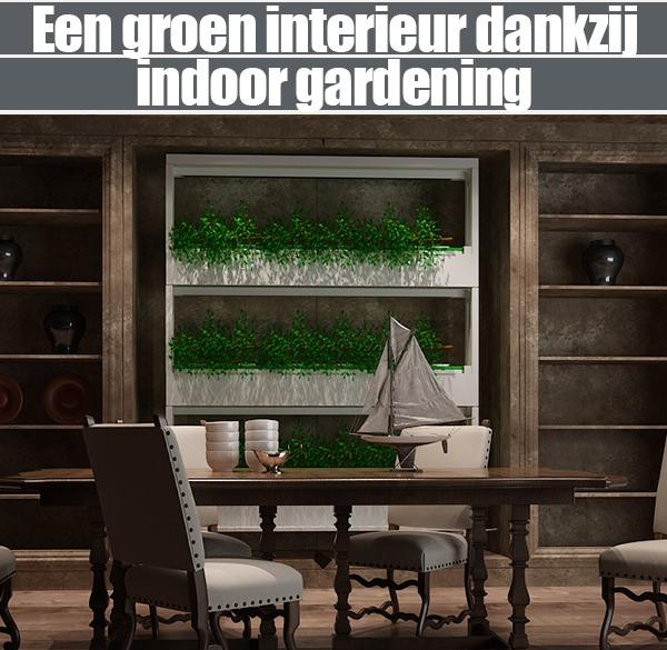 Een Groen Interieur Dankzij Indoor Gardening