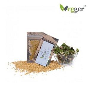Mosterd –  Bio Microgroenten – 4 Zakjes