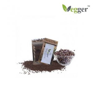 Rode Kool –  Bio Microgroenten – 4 Zakjes