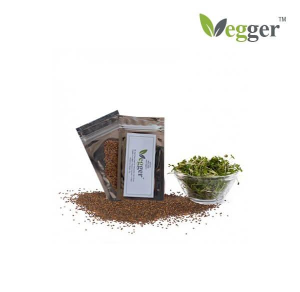 Rucola –  Bio Microgroenten – 4 Zakjes