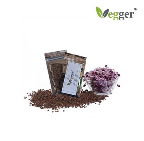 Sango –  Bio Microgroenten – 4 Zakjes