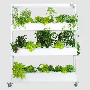 Vegger Groenten – Indoor Vertical Garden