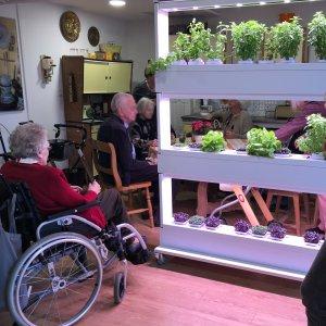 High-tech Indoor Gardens For Healing Environments
